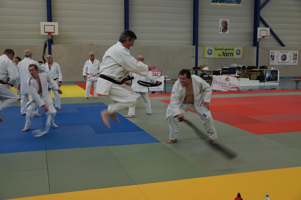 Tournoi Judo le Sequestre 1206