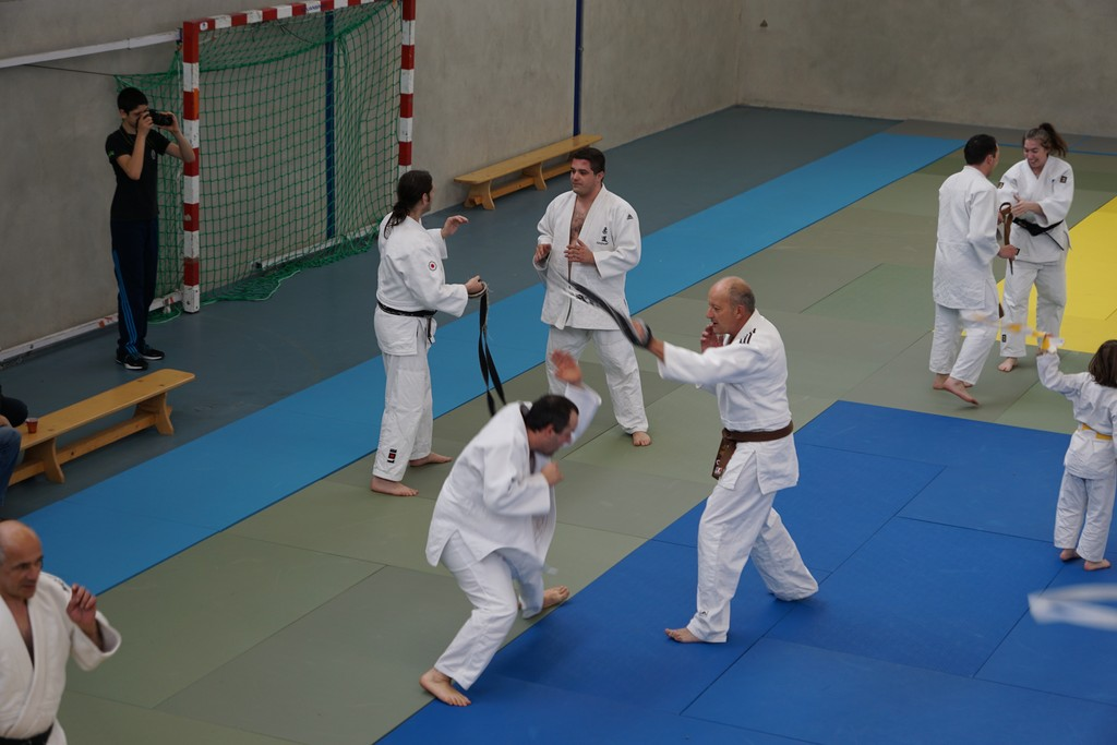 Tournoi Judo le Sequestre 1217