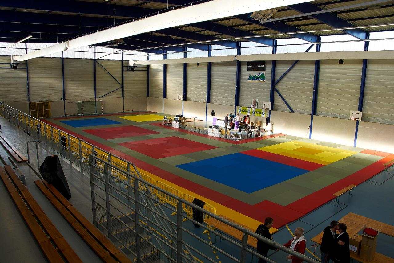 Tournoi Judo le Sequestre mars 2016 011-1