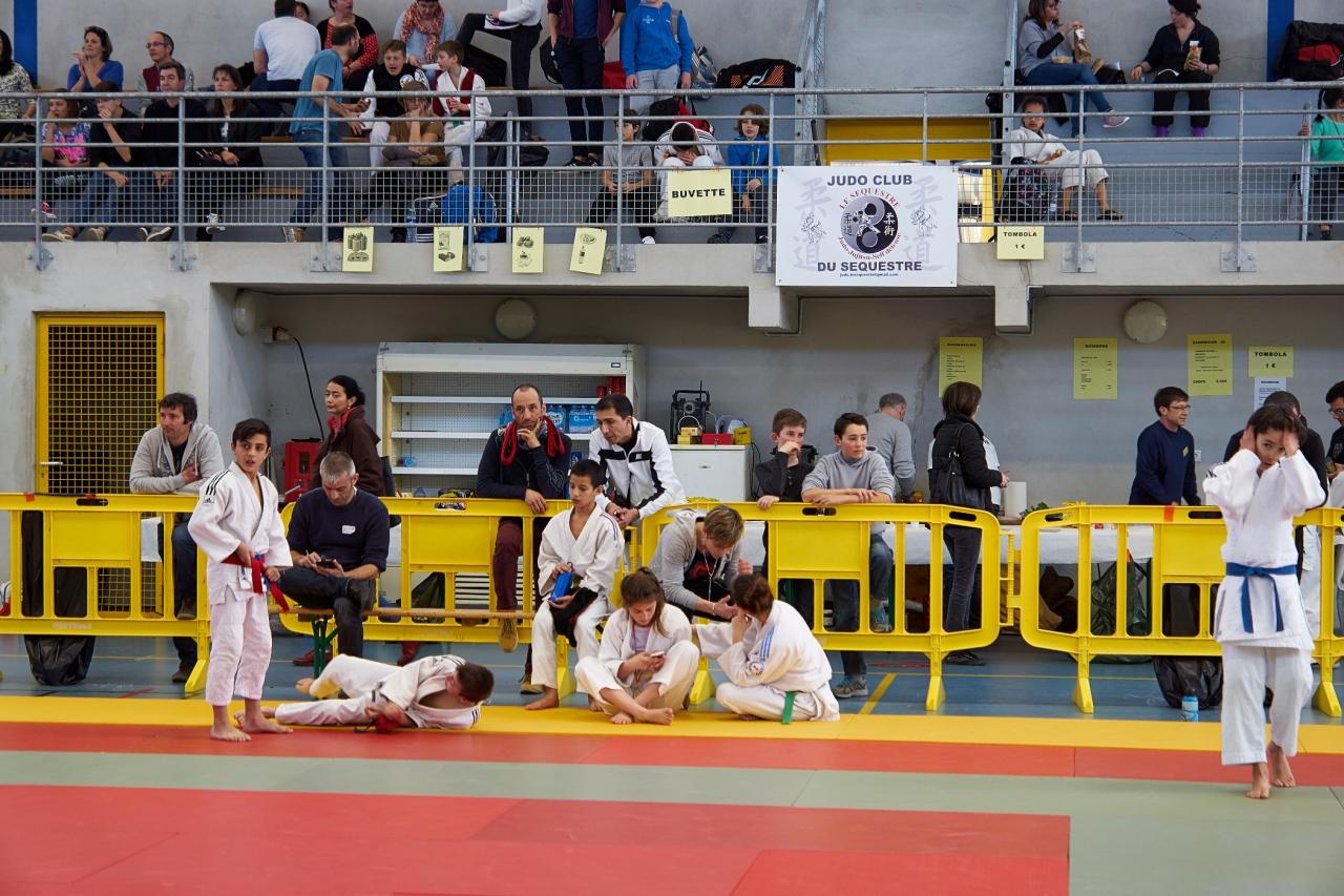 Tournoi Judo le Sequestre mars 2016 188-1